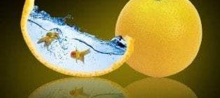 Полезен ли свежевыжатый апельсиновый сок и чем именно