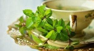 Зеленый чай с мелиссой, польза и вред для мужчин
