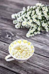 Ромашковый чай при простуде