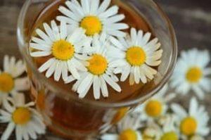 Ромашковый чай при гастрите с повышенной кислотностью